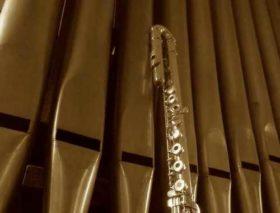 Oruge à tuyaux et flûte